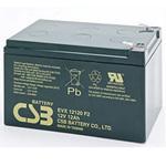 CSB Battery EVX12120 Deep Cycle Battery 12V 12AH