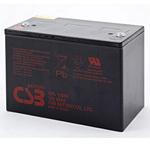 CSB Battery GPL12880 Long Life Standby Battery 12V 88AH